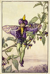 The-Nightshade-Fairy-©-The-Estate-of-Ci_217908151_321908761-2.jpg